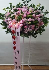 축하 핑크장미혼합 오브제